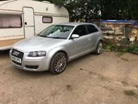 Audi A3 8p 1.6 2006 special edition