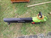 Bargain Leaf blower