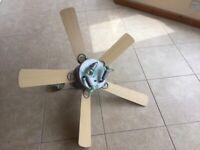 Modern ceiling fan with 3 spotlights