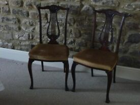 Pair of Lyre Back Mahogany Chairs by Chamberlain, King & Jones of Birmingham
