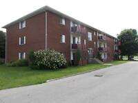 1 Bedroom Apartment for rent in Tillsonburg!