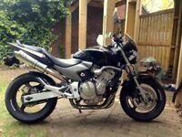 2005 Honda CB600 Hornet, Clean bike