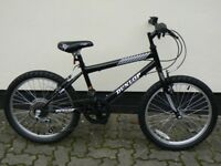 Boys Dunlop Decade Mountain Bike