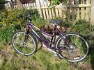 Ladies Emmelle mountain bike ( 18 inch frame / 26 inch wheel)