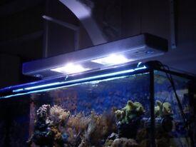 METAL HALIDE 2x 150W MH ARCADIA CLASSICA PENDANT LIGHT TANK CORAL REEF FISH