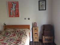 Huge lovely room to rent with walk in wardrobe