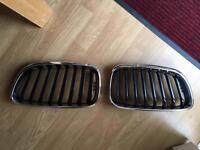 Original BMW Kidney Grilles (2 Series)