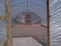 Polytunnel (polythene greenhouse)