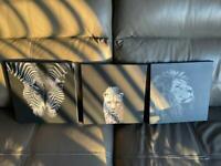 3pc Canvas Picture set