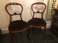 2 Antique Balloon Back Chairs. c.1900 - Walnut