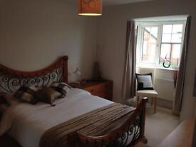 Large double ensuite room for rent.