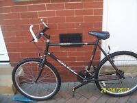 GENTS RALEIGH ROAD/MOUNTAIN BIKE IN VERY GOOD CONDITION