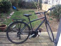 Raleigh Pioneer, hybrid and trekking bike £150