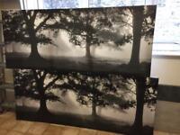2 large canvas prints - 'Meadow Dream'