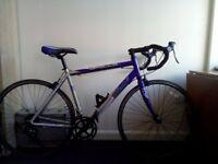 Apollo TDF02 road bike 58cm
