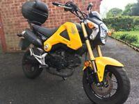 Honda MSX 125cc and 29l Topbox