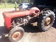 Massey Ferguson  35 Petrol Tractor Forest Glen Maroochydore Area Preview
