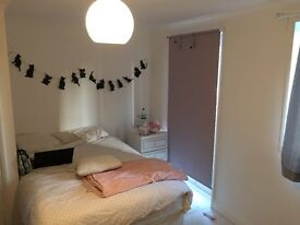 Lovely large double room Wood green