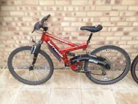 x2 Barracuda Adult Mountain Bikes