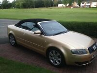 Audi A4 convertible 2004. Limited edition gold ( Bargain )
