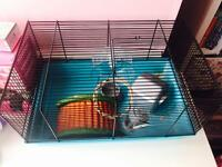 Hamster case for sale only £25