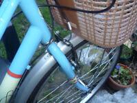 Blue bicycle - Ladies