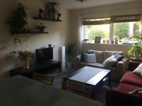 HOUSE CLEARANCE Arturo- Sofa, Dinning Table, Television, TV Bench, Coffee Table, Lamp, Plants & Pots