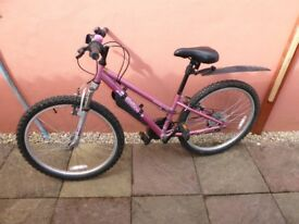 "Appolo Vivid 20"" Girl's Bike In Excellent Condition Used One Season"
