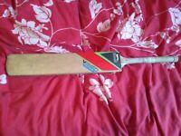 Slazenger V360 protege cricket bat