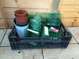 FREE small plant pots and seed trays