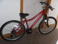 girls/ladies mountain bike saracen diuo