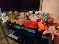 Large collection of collectable beanie babies some rare