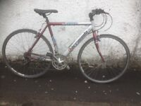 Barracuda Squadra. Men's hybrid bike. Fully serviced, fully safe and ready to go.