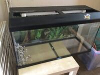 Fsh tank for sale (80cms)