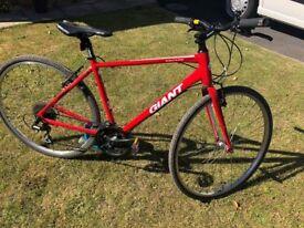 Ladies Hybrid Road Bike