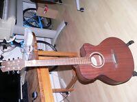 James Neglian Semi Acoustic