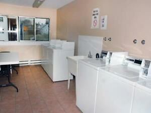 Large 1 Bedroom Apartment in Kitchener - ALL UTILITIES INCL.! Kitchener / Waterloo Kitchener Area image 8