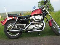 HARLEY~DAVIDSON SPORTSTER 883 CLASSIC MOTORBIKE BOBBER, CHOPPER, HARLEY