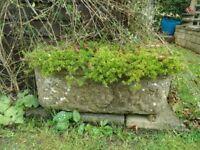 Various stone / cast stone planters for sale