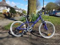 Girls GIANT bike for sale
