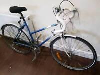 Mistral road bike (women's)