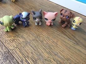 Littlest pet shop rares (3)