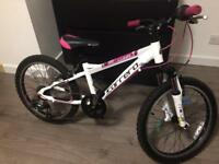 Girls mountain bike 20""
