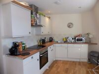 ***MODERN TWO BEDROOM FLAT ON ROMAN ROAD E3 5BY TO RENT*** VERY SPACIOUS, CLOSE TO VICTORIA PARK