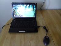 """Netbook Asus Eee PC, Windows 7, 60GB HDD, 2GB RAM, 12.1"""" screen, HDMI, webcam"""