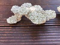 Marine tropical aqua rocks landscape live rock