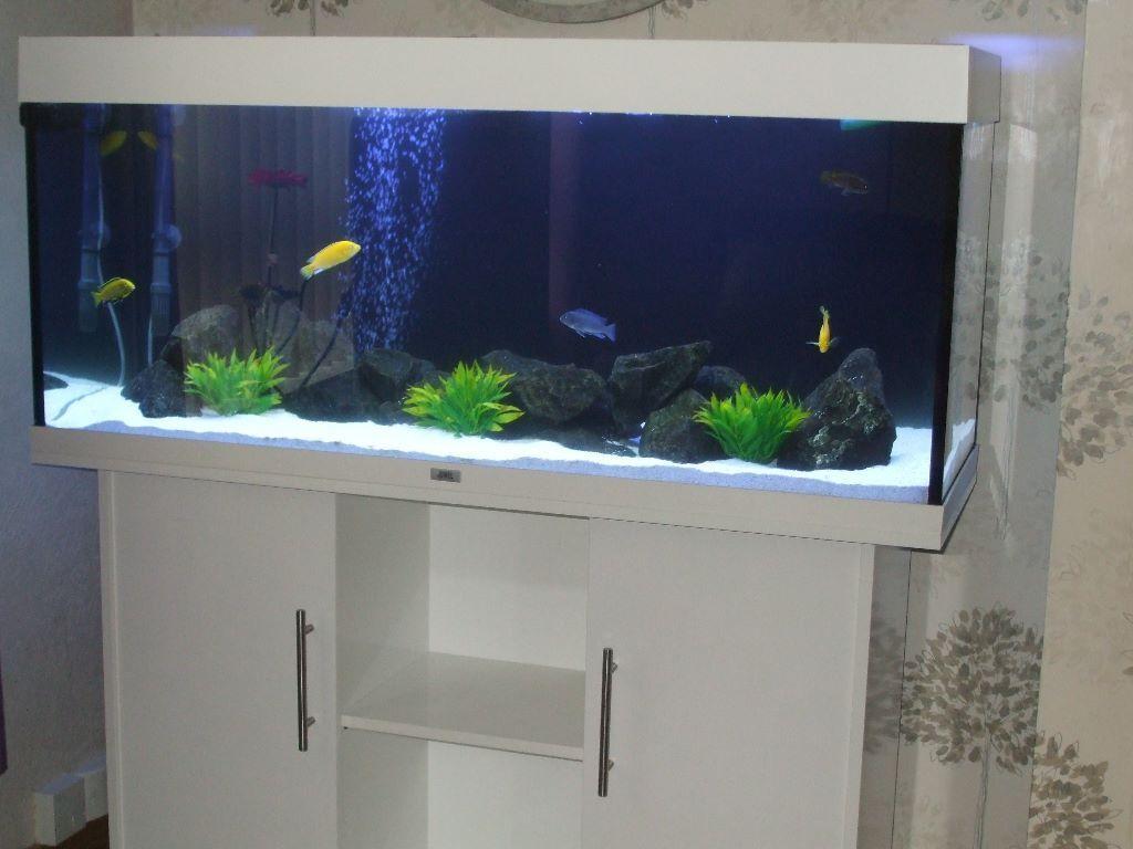 Juwel rio 240 aquarium fish tank - Juwel Rio 240 Litre Fish Tank Aquarium Marine Or Tropical