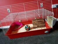 Rabbit & cage