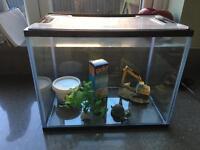 Fish tank - starter kit