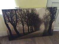 Ikea canvas picture